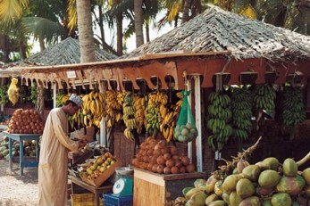 Oman-12-Conde-Nast-Traveller-5Apr13-Max-Kim-Bee_b_426x284